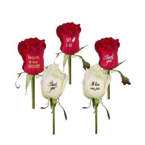 Bedrukte rozen