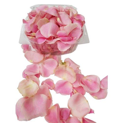 Rozen.nl Rozenblaadjes Pink