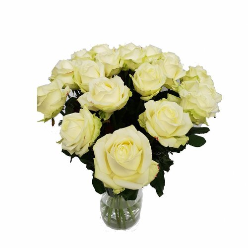 Witte rozen bestellen en laten bezorgen