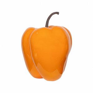 PotteryPots Pepper glazed Orange S/M