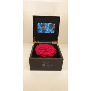 Rozen.nl Videobox met Longlife Roos of rozen