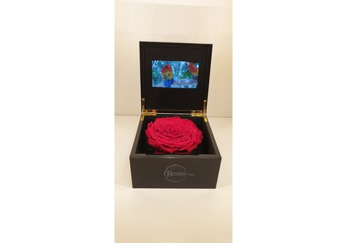 Rozen.nl VIDEO BOX WITH LONGLIFE ROSES