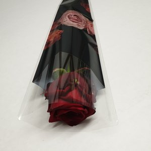 Rozen.nl Red Roses in a single sleeve -