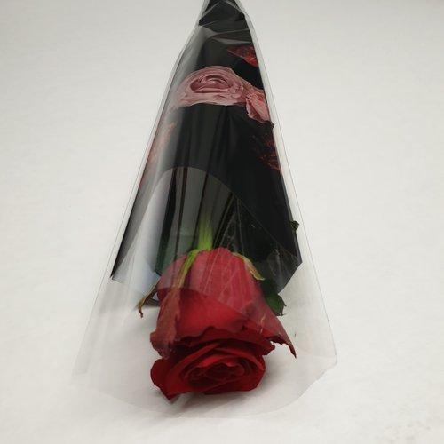 Rozen.nl Rode roos per stuk verpakt in waterflesje in folie