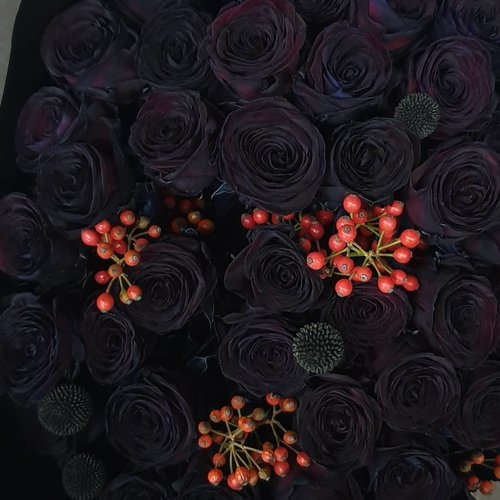 Zwarte rozen bestellen doe je bij rozen.nl!