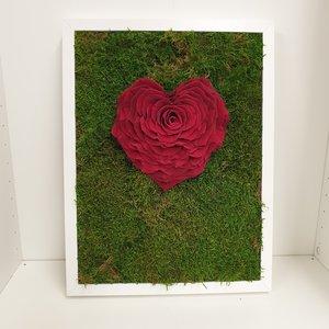 rozen.nl Mos schilderij met rood rozenhart