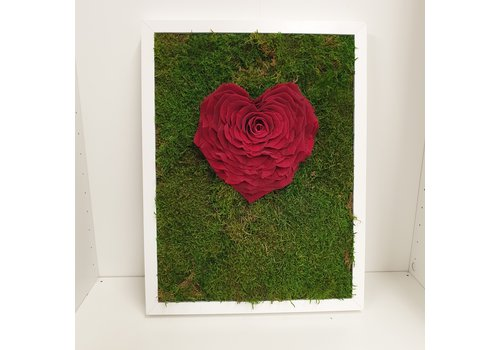 rozen.nl Moss deco with heartshaped red rose