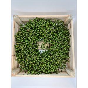 rozen.nl Rose hip Wreath