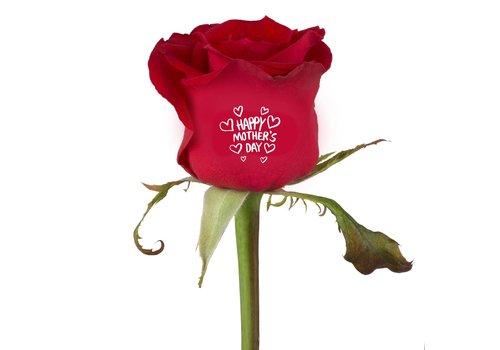 rozen.nl Moederdag roos met print in rood