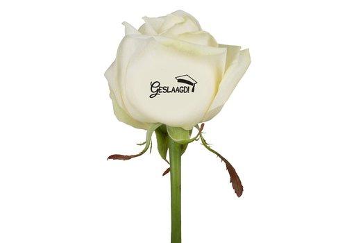 "rozen.nl Bedrukte rozen ""Geslaagd""  wit"