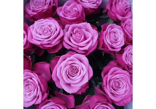 rozen.nl Prince of Persia - Paarse rozen - 60 stuks