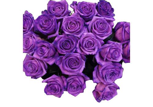 Rozen.nl Vendela - Purple roses - 12 pieces