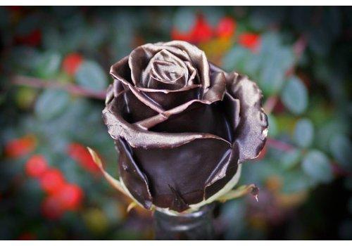 Rozen.nl Chocolate gold R-384