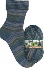 Opal Wolle Opal Sokkenwol  breien en haken