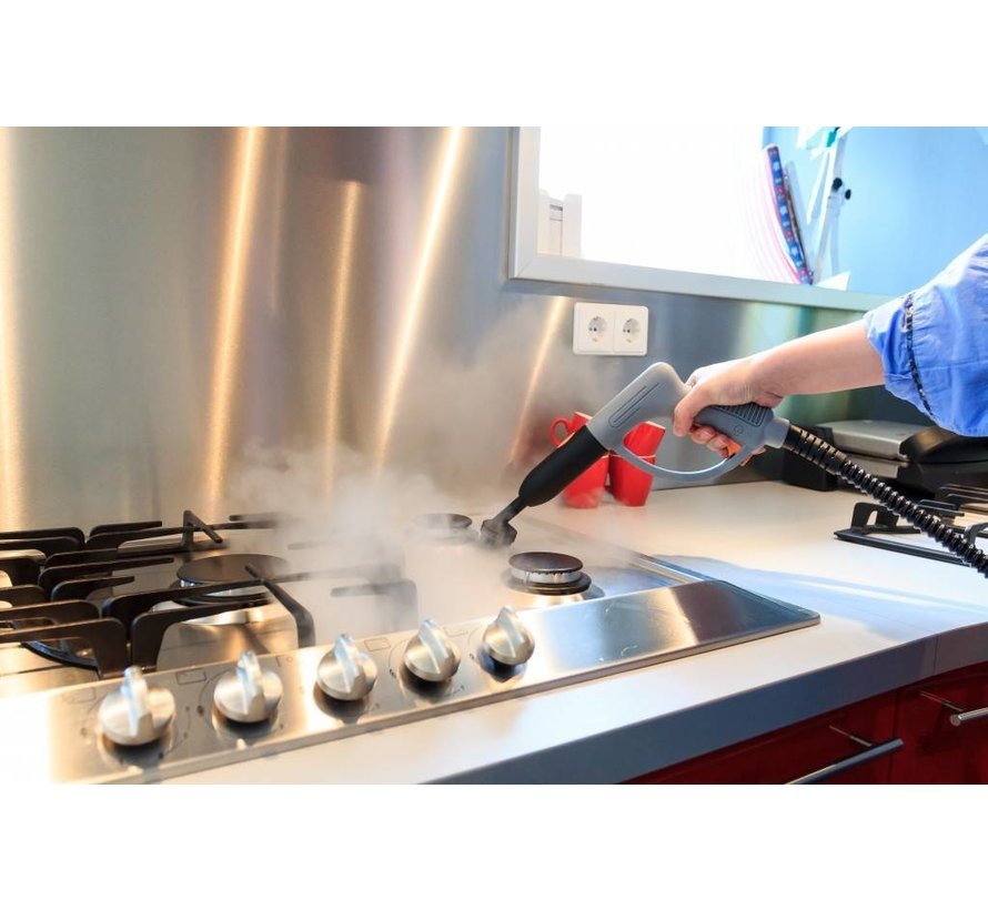 Steamboxxer 2 in 1 steam cleaner and weed killer BT-WK001