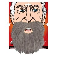 Grijze baard met snor