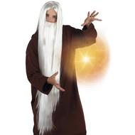 Pruik met baard Wizard
