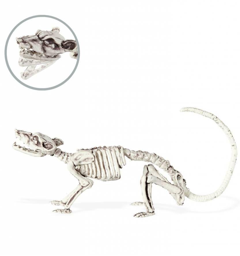 Decoratief ratten skelet voor Halloween