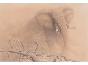 African Dust -WWF Edition (135 x 95 cm)