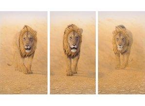 Three Kings - WWF Edition (206 x 135 cm)
