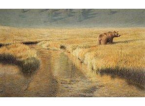 Big brown bear (67 x 45 cm)