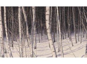 Forrest shadows (80 x 45 cm)