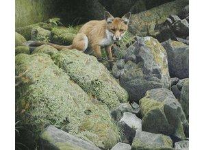 Foxy (60 x 57 cm)