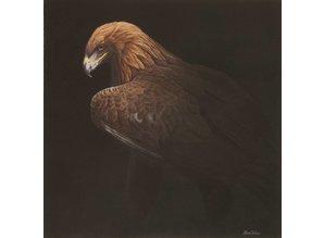 Golden Eagle 2 (50 x 50 cm)