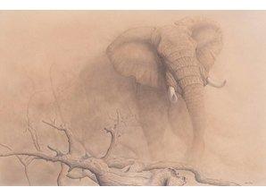 African Dust (100 x 66 cm)