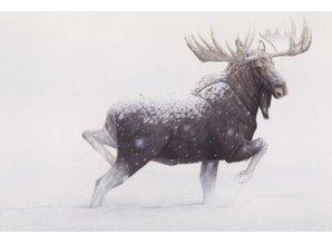 Snowfall Moose (90 x 60 cm)