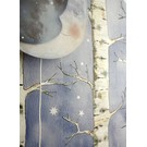 Starry Sky Stickers Silver