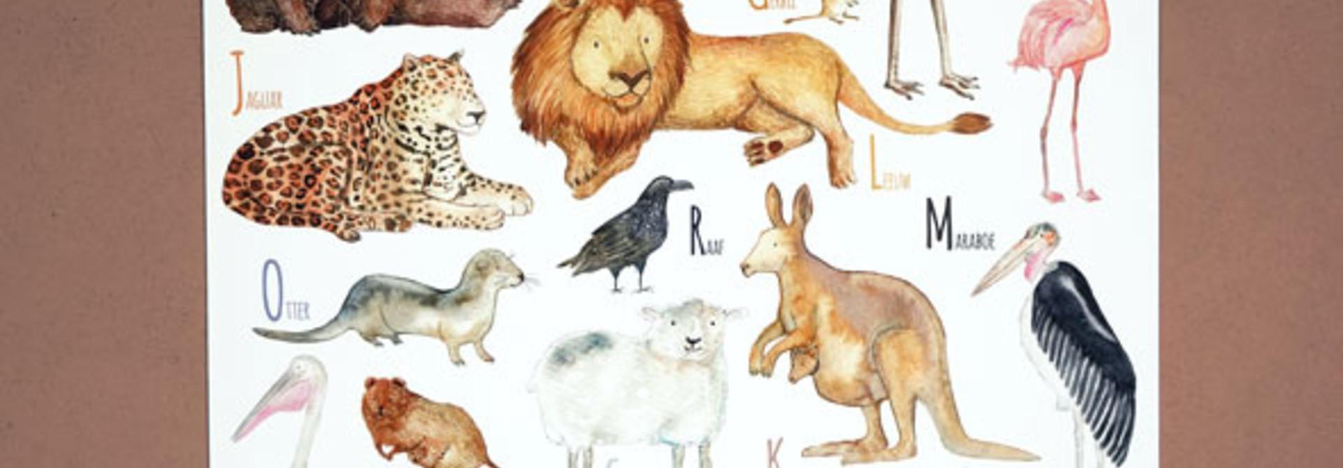 Animal ABC (Dutch)