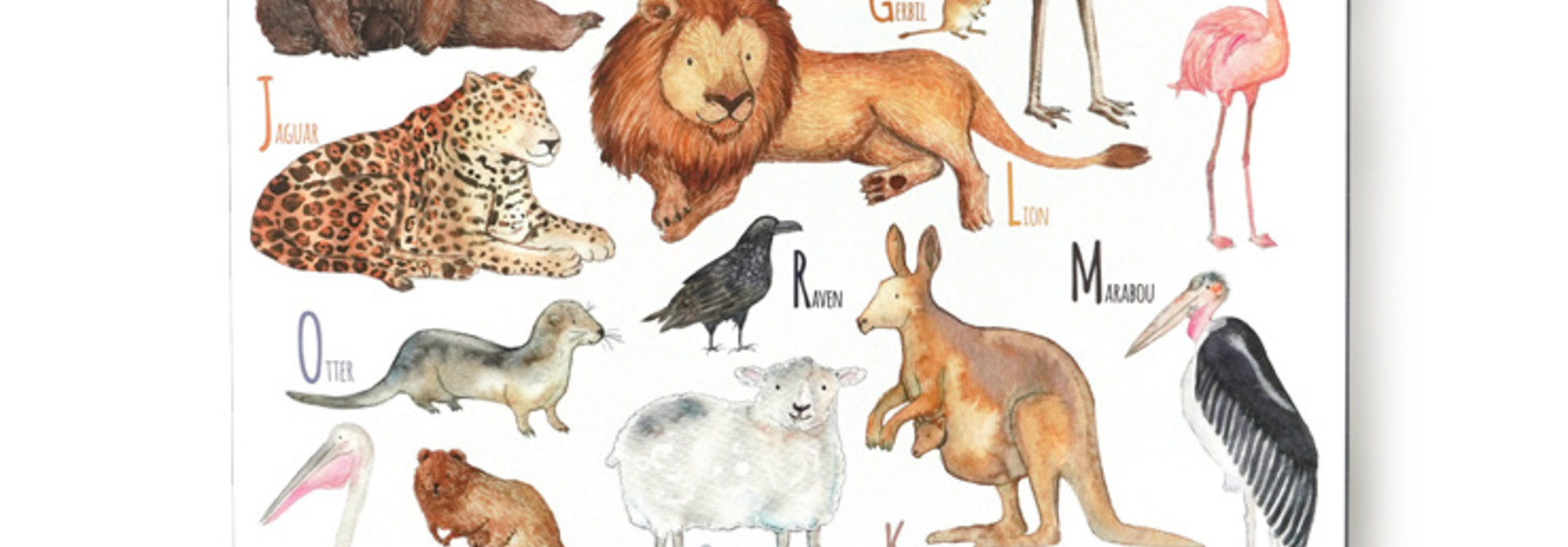 Animal ABC (EN)