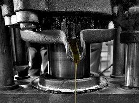 Unieke Calamamsi azijn uit Frankrijk