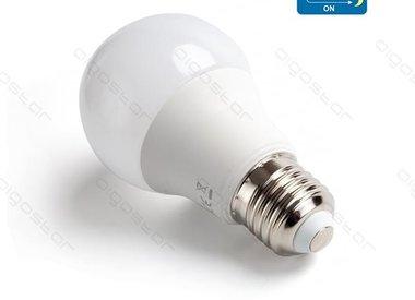 LED met bewegingsmelder