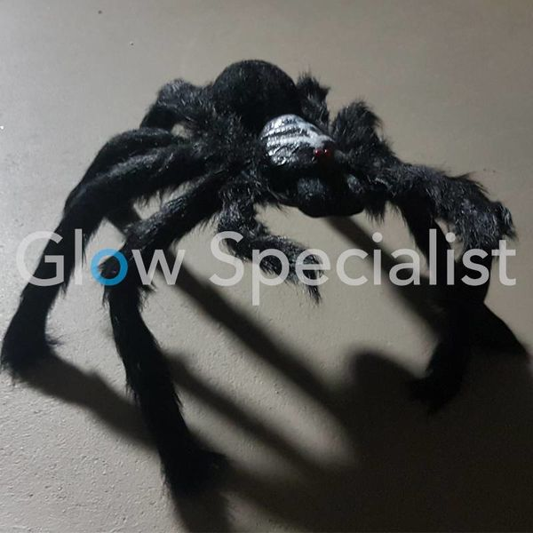 HALLOWEEN BLACK HAIRY TARANTULA