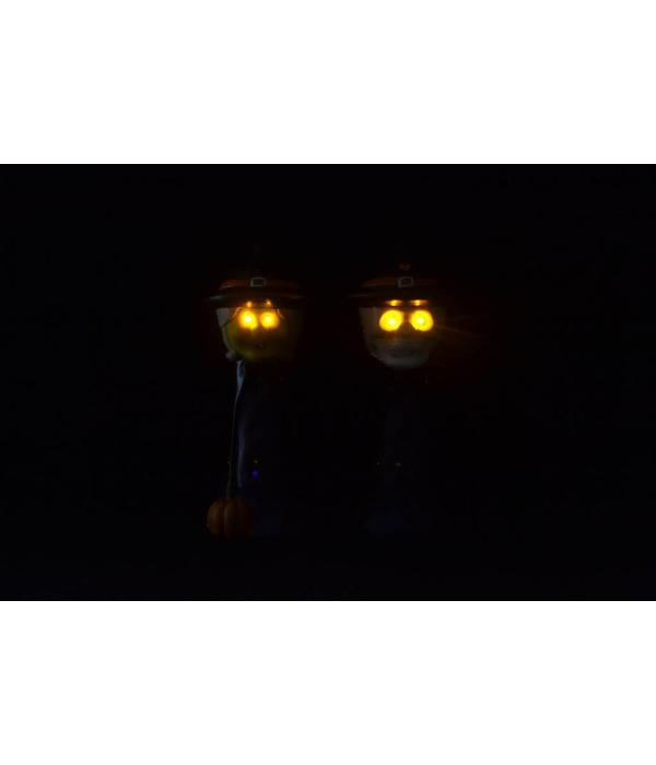 LED HALLOWEEN DECORATION - WITCH OR SKULL