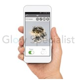 LED CLUSTER LIGHTING - 1152 LIGHTS - WARM WHITE - WITH APP