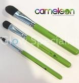 - Cameleon CAMELEON FILBERT BRUSH - NR 2 - MEDIUM