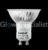 - Omnilux UV / BLACKLIGHT OMNILUX GU10 - 230V - 60 LED