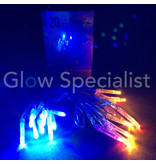 LED LIGHTS - 20 LAMPJES - MULTICOLOR