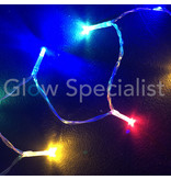 LED LIGHTS - 10 LAMPJES - MULTICOLOR