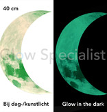 GLOW IN THE DARK HALF MOON - 2 SIZES