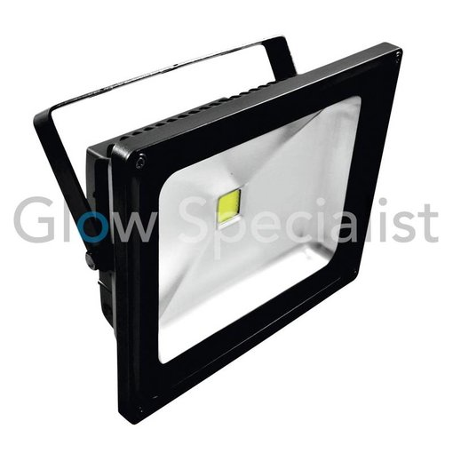 - Eurolite EUROLITE LED IP FL - 50 COB UV