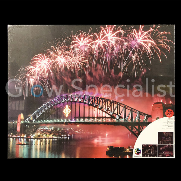 CANVAS PAINTING - SYDNEY HARBOUR BRIDGE - COLOR CHANGING LED - 50 X 40CM