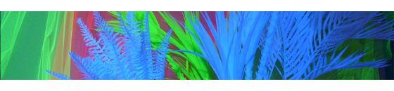 UV Plants