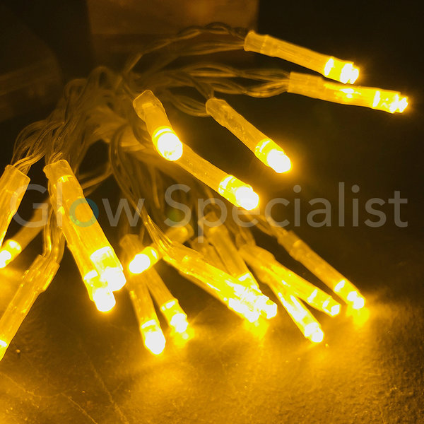 LED LIGHTS - 50 LAMPJES - GEEL