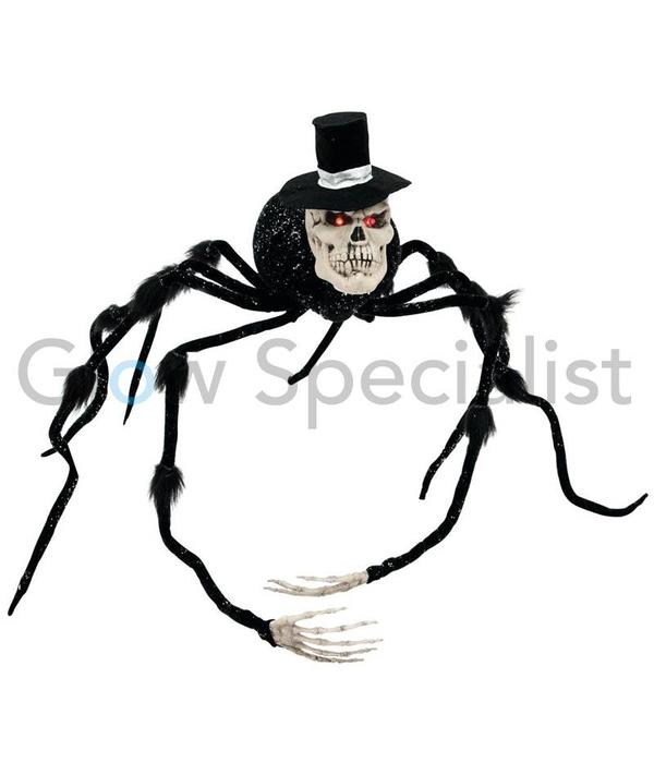 HALLOWEEN SPIDER GROOM