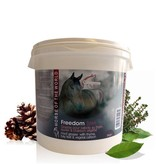 Horse of the World Horse of the World Freedom Black