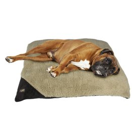 All for paws Classic Pillow